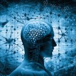3 Points On The Endocannabinoid System